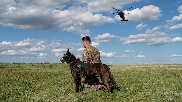 Military Working Dog Flight Training, Kosovo Force Regional Command East