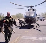 National Guard Rescues Border Patrol Canine in Distress Courtesy: U.S. Customs and Border Protection TUCSON, Ariz. (July 3, 2018) – National Guard personnel serving under Operation Guardian Support saved the life of a Tucson Sector Border Patrol canine experiencing a medical emergency today. A joint Operation Guardian Support aircrew responded to a K-9 handler's call for