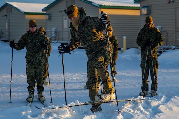 U.S. Marines practice using skiing equipment during Exercise Arctic Edge 20 at Fort Greely, Alaska, Feb. 3.