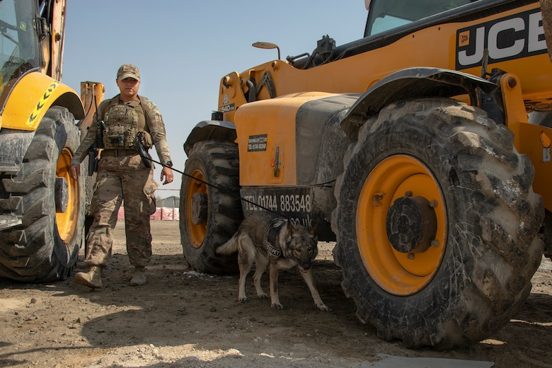 A military working dog handler searches a construction area for hidden substances
