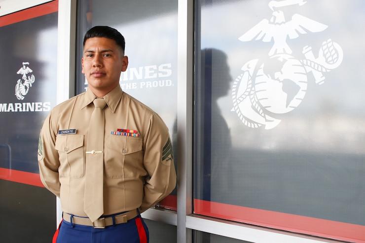 National Guard psychological health directors