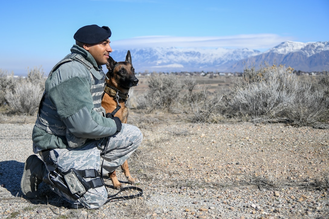 Staff Sgt. Paul Bryant, 75th Security Force Squadron, sits with Xxuthus, a military working dog, at Hill Air Force Base, Utah, March 4, 2020. Bryant has been XXuthus's handler for six months. Xxuthus is a single-purpose MWD, trained as an explosive detection dog. (U.S. Air Force photo by Cynthia Griggs)