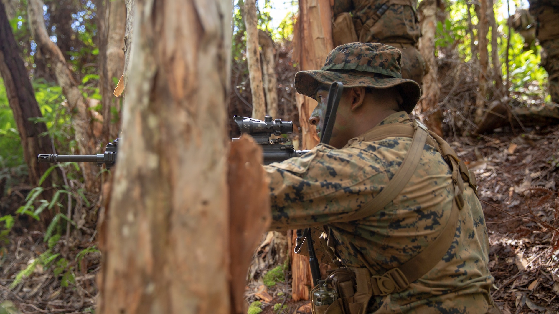 U.S. Marine Corps Sgt. Allen Valdez with kilo company, 3rd Battalion, 3rd Marine Regiment sights down range during a squad patrol at Schofield Barracks, Hawaii, Feb. 25, 2020. Bougainville I is the beginning exercise that focus on squad level battle drills and tactical training aiming to strengthen the units pre-deployment readiness. (U.S. Marine Corps photo by Cpl. Eric Tso)