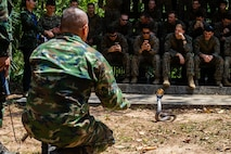 A Royal Thai Marine showcases a cobra to U.S. Marines with the 31st Marine Expeditionary Unit during jungle survival training at Camp Lotawin, Kingdom of Thailand, March 4, 2020, as part of exercise Cobra Gold 2020. Exercise Cobra Gold 20, in its 39th iteration, is designed to advance regional security and ensure effective responses to regional crises by bringing together multinational forces to address shared goals and security commitments in the Indo-Pacific region. (U.S. Marine Corps photo by Cpl. Isaac Cantrell)