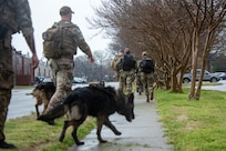 A group of military working dog handlers walk down the street.