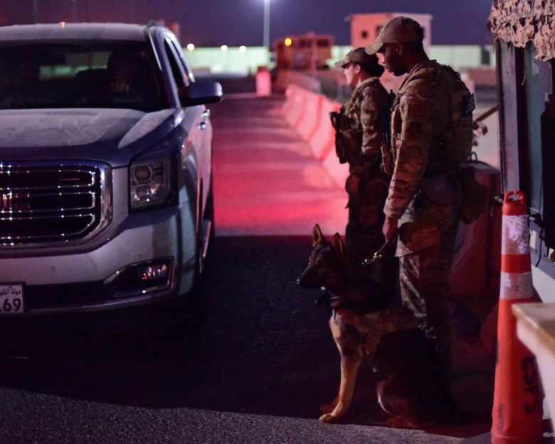 Military Working Dog handler prepares to execute a vehicle search
