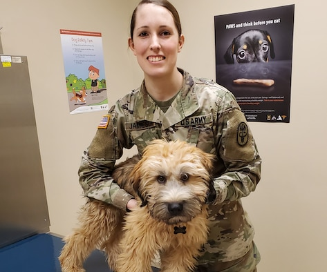 Army Sgt. Brianna Jamieson, NCOIC of the Wright-Patterson Veterinary Treatment facility evaluates Dodger during a routine appointment. (Courtesy photo)