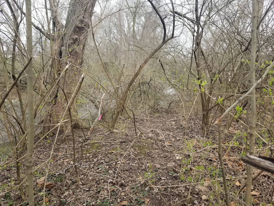 A view of Coldwater Creek and environs Monday, March 23, 2020. Coldwater Creek corridor (banks and sediment) and adjacent properties from New Halls Ferry in Florissant to Westminster in North St. Louis County make up a stretch of CWC being sampled in 2020.