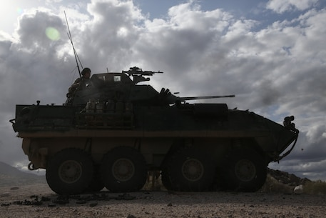 U.S. Marines with 2nd Light Armored Reconnaissance Battalion (2nd LAR), 2d Marine Division fire the M242 Bushmaster during a live fire range on the National Training Center 20-05 in Ft. Irwin, California on March 20, 2020.