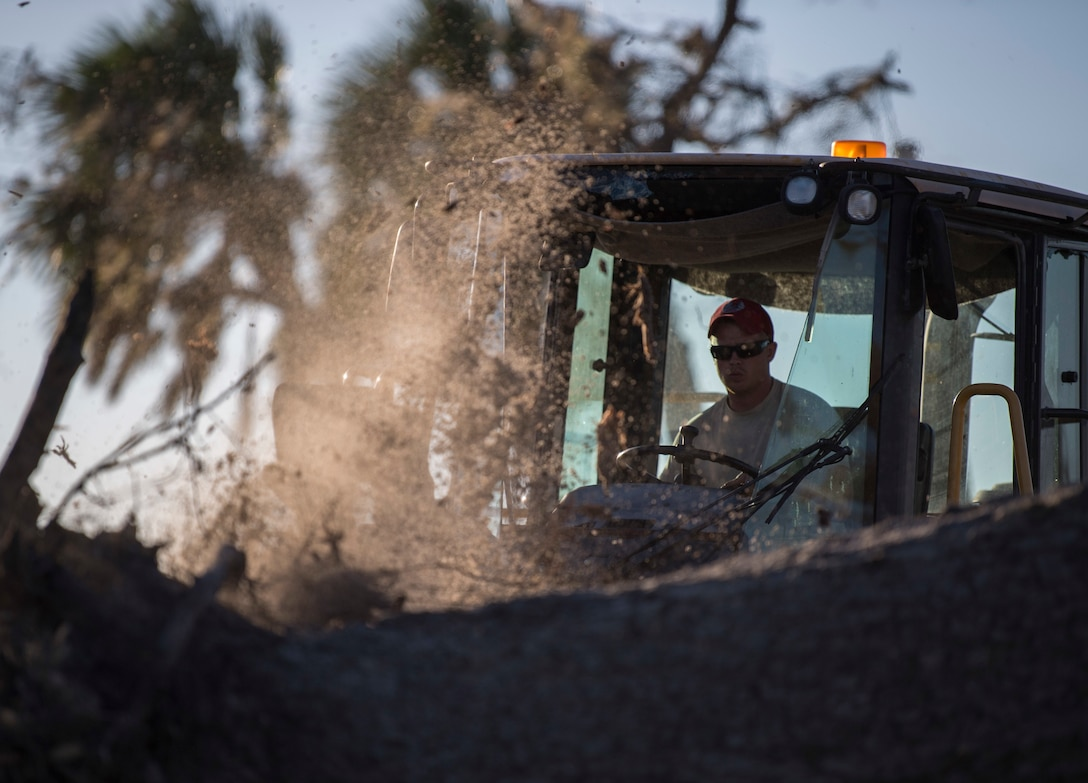 Civil engineers of the 823rd REDHORSE Squadron, Hurlburt Field, Florida, saw a damaged tree at Tyndall Air Force Base, Florida, Oct. 21, 2018.