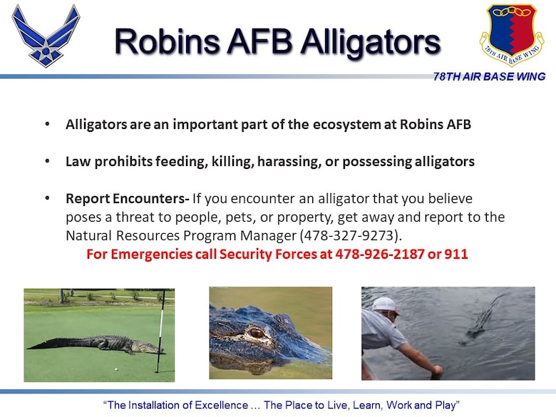 Graphic shows photos of alligators and says to call Security Forces in an emergency at 478-926-2187.