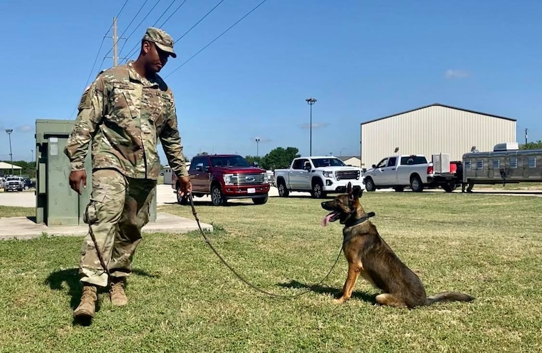 The 341st Training Squadron conducts all military working dog initial training as well as all MWD handlers courses for the Department of Defense right here at Joint Base San Antonio-Lackland, Texas. This elite team was able to share what they do with a class of 4th grade students from Buda Elementary School during a virtual canine demonstration, May 18, 2020.