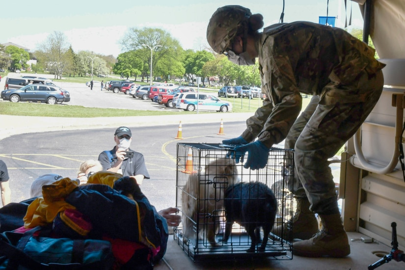 A soldier unloads a cage of small animals from a truck.