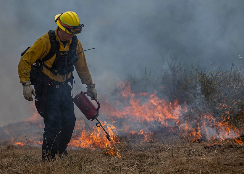 A firefighter pours fuel on a planned burn.