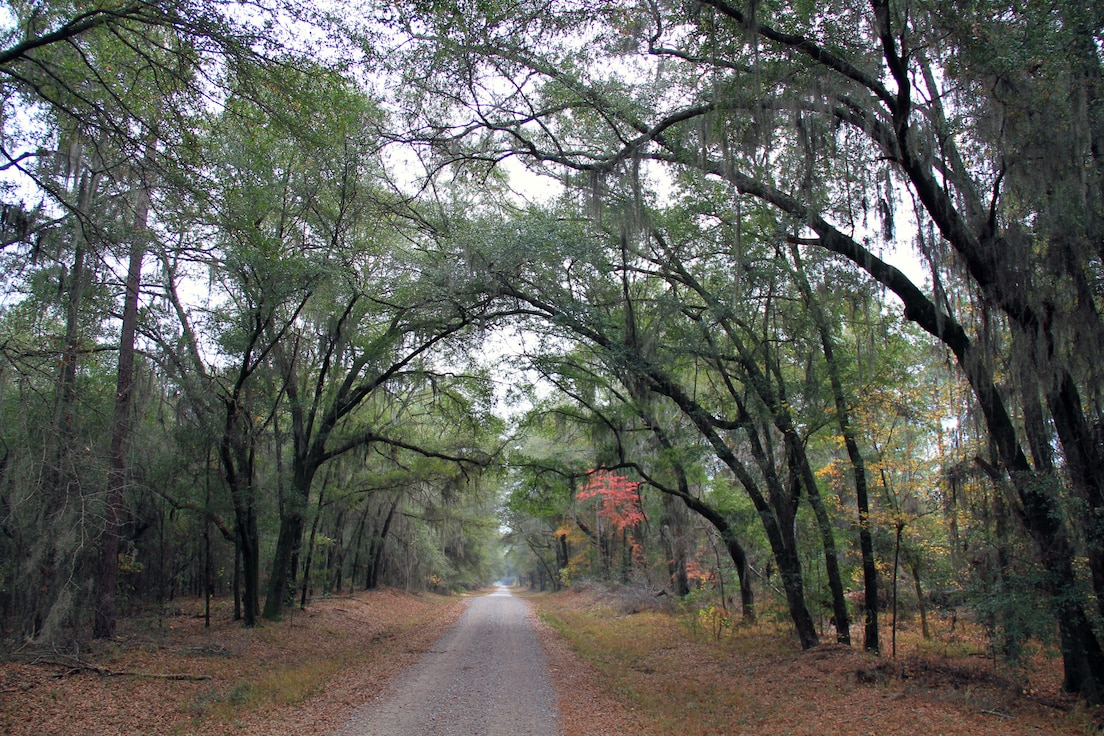 U.S. Forest Service Savannah River
