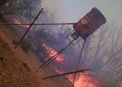 Fire near tripod wildlife feeder