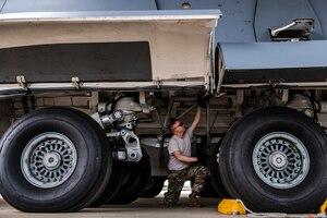 Landing gear check