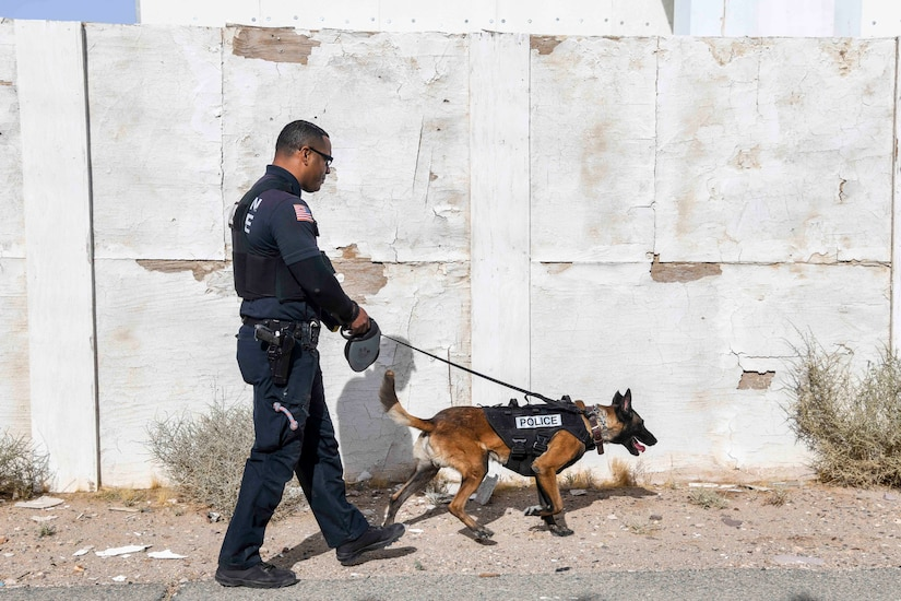 A man in a police uniform walks with a dog.