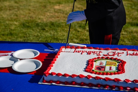 U.S. Marine Corps Brig. Gen. Bobbi Shea, commanding general, 1st Marine Logistics Group, I Marine Expeditionary Force, cuts the cake during the 1st MLG Cake-Cutting Ceremony at Camp Pendleton California, Nov. 9, 2020.