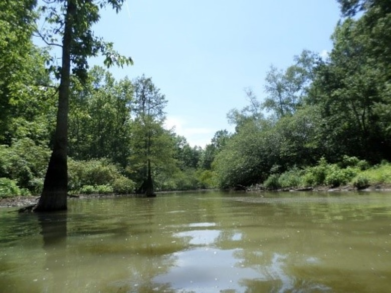 IN THE PHOTO, one of the locations where service contracts are scheduled to be executed. These service contracts directly support this critical mission and largely contribute to maintaining the Mississippi River and Tributaries Project. Congratulations to each team for successfully executing each service contract and playing a pivotal role in our nation's thriving commerce.