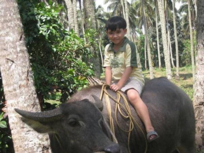 boy sits on a water buffalo