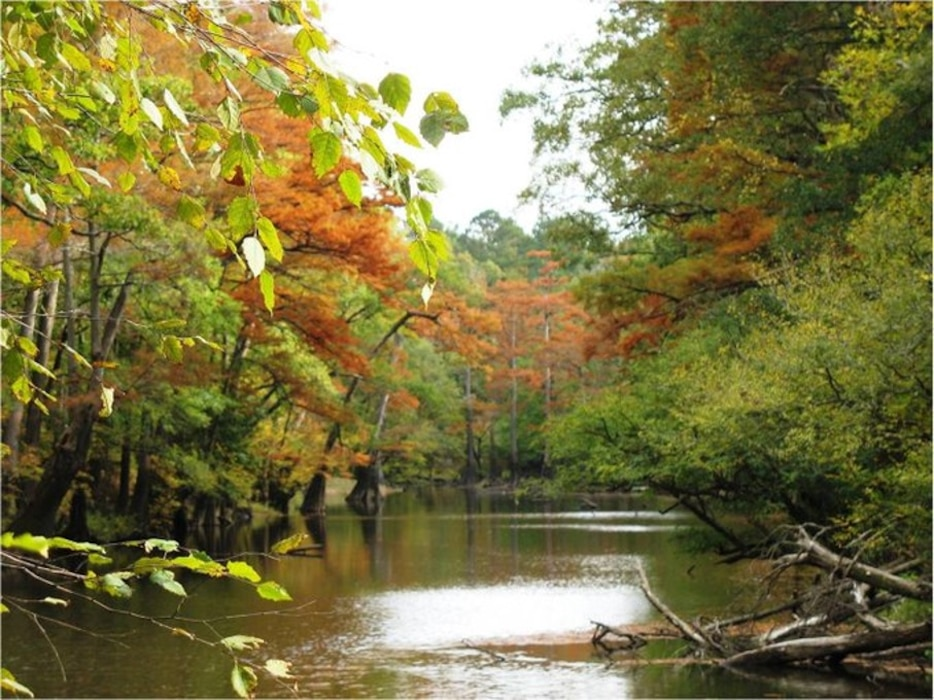 The new Bayou Bodcau online map provides users with an intuitive, all-in-one informational tool for the area's numerous recreation opportunities, including campsites, boat ramps, trailheads, designated hunting areas and day use areas.