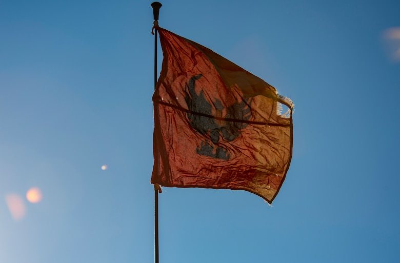 Raven flag flies in the wind.