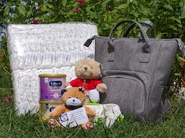 A blanket, diaper bag, two teddy bears, two containers of baby formula, and a package of baby wipes arranged on a grassy lawn with a flowering shrub in the background.