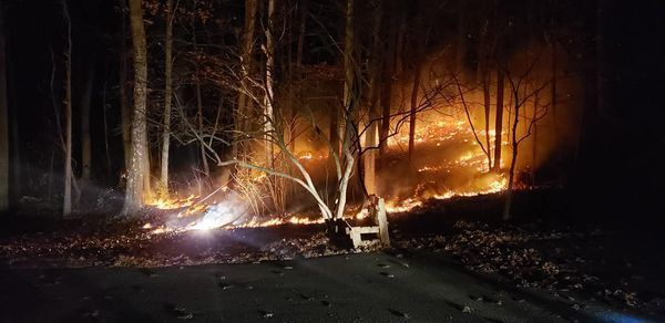 A wildland fire 1st Sgt. John Russell of the West Virginia National Guard's 249th Band was confronted with near his home in Winchester, Virginia, Nov. 19, 2020. Russell used basic wildland firefighting training he received with the West Virginia Division of Forestry (WVDOF) in October 2019 to help contain the fire and save a neighbor's home from potential damage.