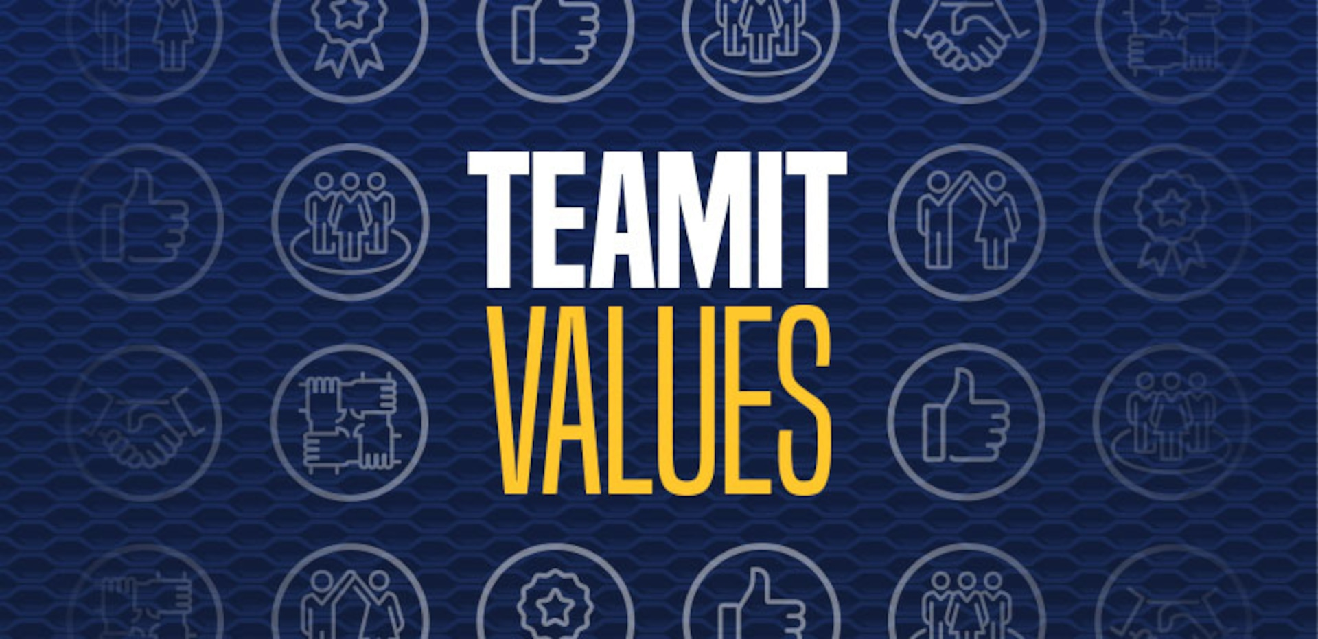DCAA TEAMIT Values
