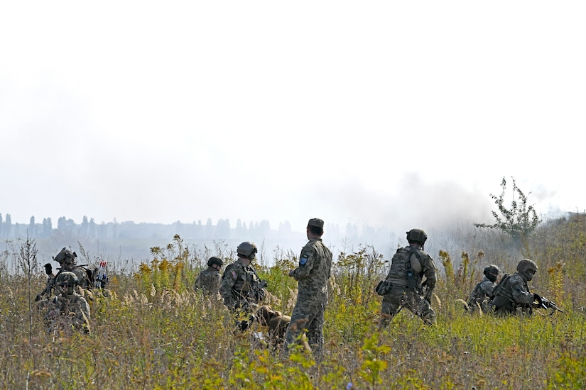 Military personnel conduct field exercise.
