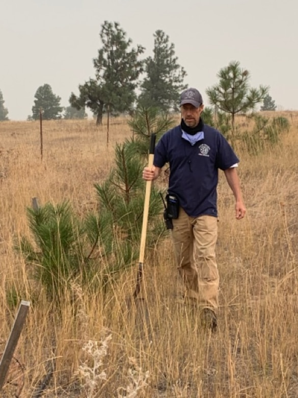 Jim Day replants healthy trees away from buildings as part of the Firewise program at High Prairie.