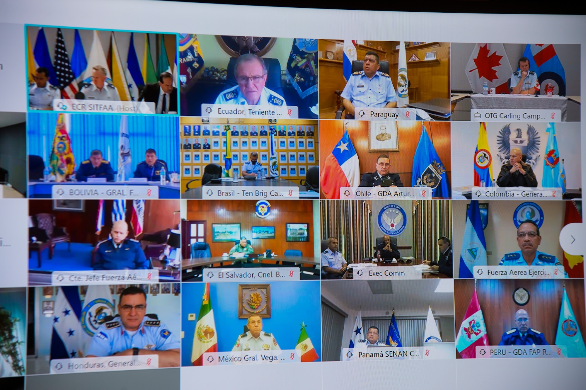 screen view of virtual conference