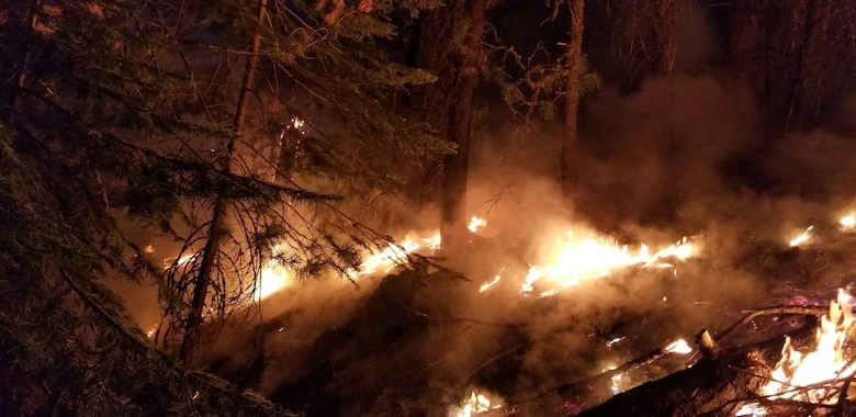 Wildland fires burn during a mid-August night near Susanville, Calif. A series of wildland fires has destroyed more than 30,000 acres of land around Susanville. (Courtesy Photo)