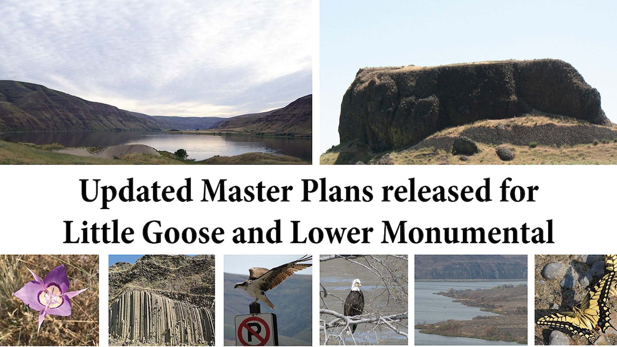 "a grid of photos of landscapes and birds with the text ""Updated Master Plans released for Little Goose and Lower Monumental"""