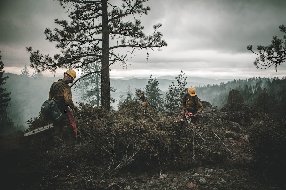 Two service members in hardhats use chainsaws in a forested area with a smoky sky in the background.