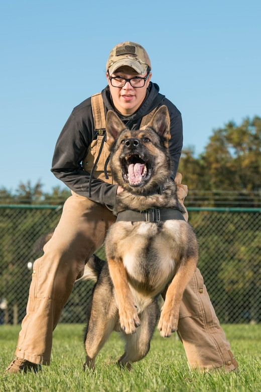 Senior Airman Theresa Braak, 436th Security Forces Squadron military working dog handler, and Military Working Dog Sam conduct pursuit-and-attack training Oct. 8, 2020, at Dover Air Force Base, Delaware. Based on their strengths, the MWDs are trained and certified to conduct patrol work, detection of improvised explosive devices or detection of contraband. (U.S. Air Force photo by Mauricio Campino)
