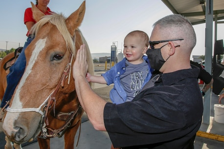 Gunnery Sergeant Brian Erdman, Test Measurement and Diagnostic Equipment Fleet Liaison, shows his son, Damiean, how to pet Ford, Mounted Color Guard horse, in front of the Marine Corps Exchange aboard Marine Corps Logistics Base Barstow, California, Oct. 7.