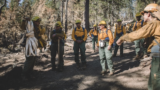 U.S. Marine Corps Brig. Gen. Bobbie Shea, commanding general 1st Marine Logistics Group, visited Marines and Sailors assigned to 7th ESB, who are conducting wildland firefighting efforts near the Shasta-Trinity National Forest, Oct. 17, 2020.