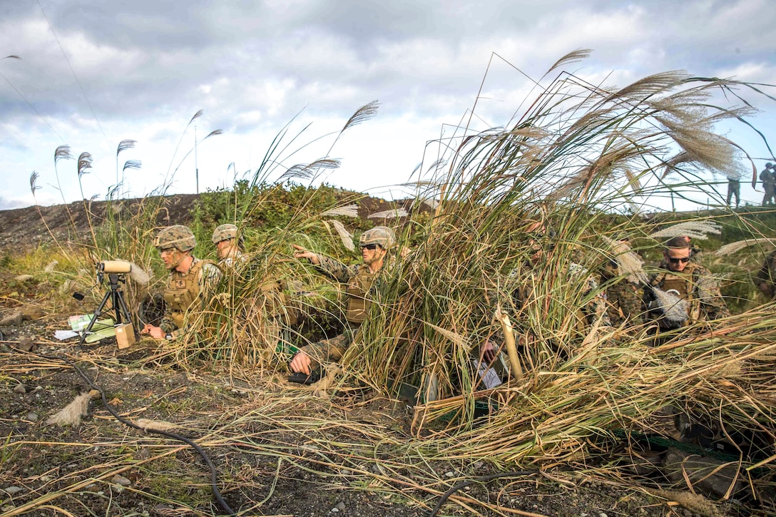 A group of Marines crouch in tall grass as one points to an area in front of them.