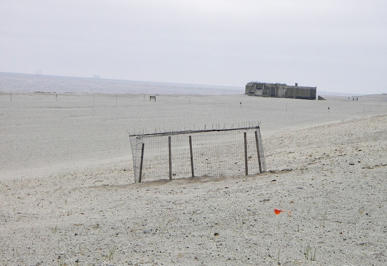 Cape May Meadows, shortly after the completion of the restoration project (circa 2006-07 ). In the foreground is a Piping Plover nest protected by a predator exclosure.