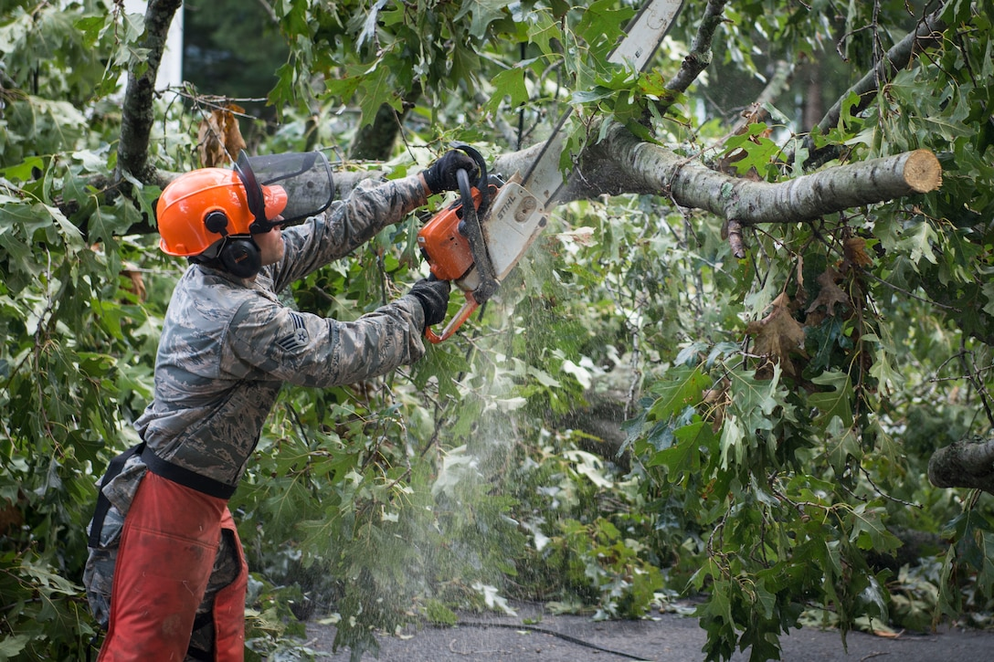An airman uses a chain saw to cut tree branches.