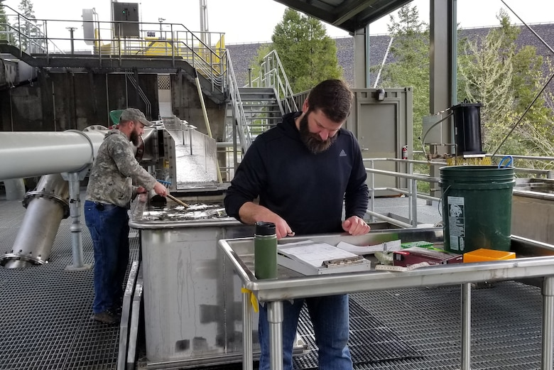 Biologists from the Corps work with our partners at the Oregon Department of Fish and Wildlife and the National Marine Fisheries Service to improve fish numbers within the basin. They record data about the fish, including size, weight, gender and whether they are hatchery fish or wild fish.