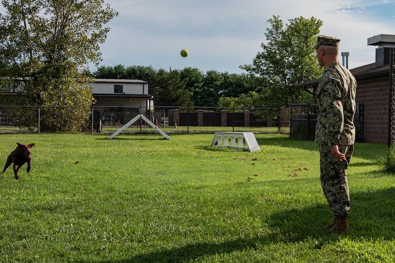 Photo of a sailor throwing a ball to a dog.