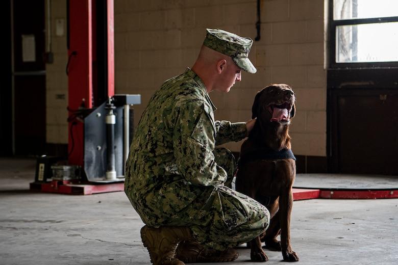 Photo of a sailor petting a dog.