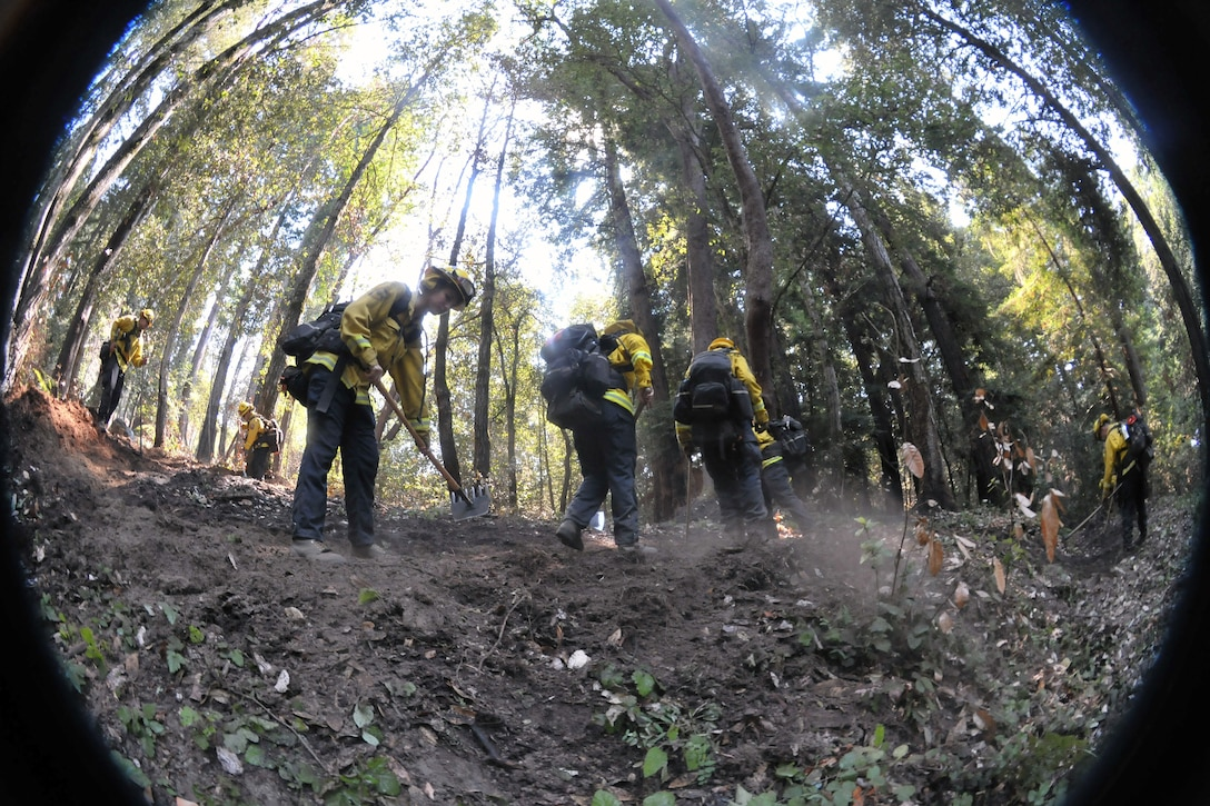 Men in firefighting gear dig a small trench in the woods.