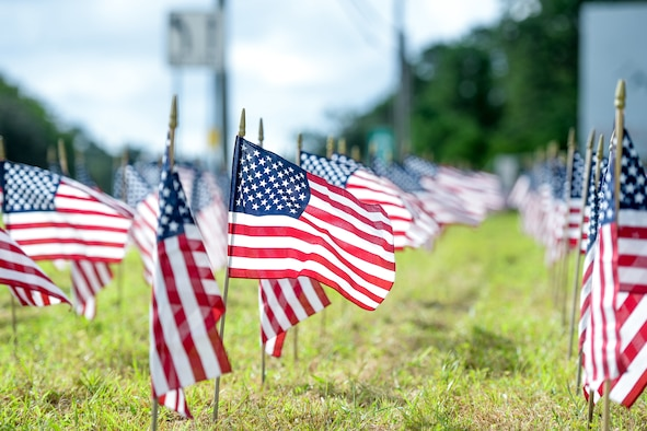 A photo of American flags standing in the ground.