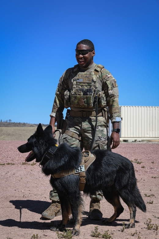 Defender and working dog