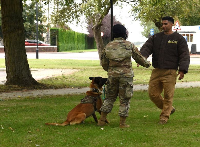 "Staff Sgt. Jennifer Brinker, 100th Security Forces Squadron military working dog handler, and MWD Cigi, demonstrate dealing with a ""bad guy,"" Staff Sgt. Ivan Mendez, 100th SFS MWD handler, during a demonstration as part of Patriot Day and 9/11 remembrance events at Royal Air Force Mildenhall, England, Sept. 11, 2020."