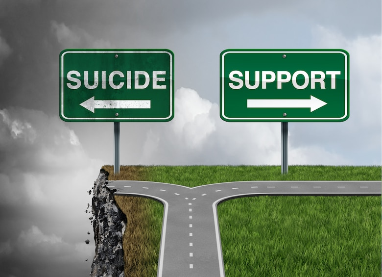 Graphic shows a road leading two directions - one to suicide the other to support.